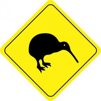 Der Kiwi, dass Nationaltier der Neuseeländer