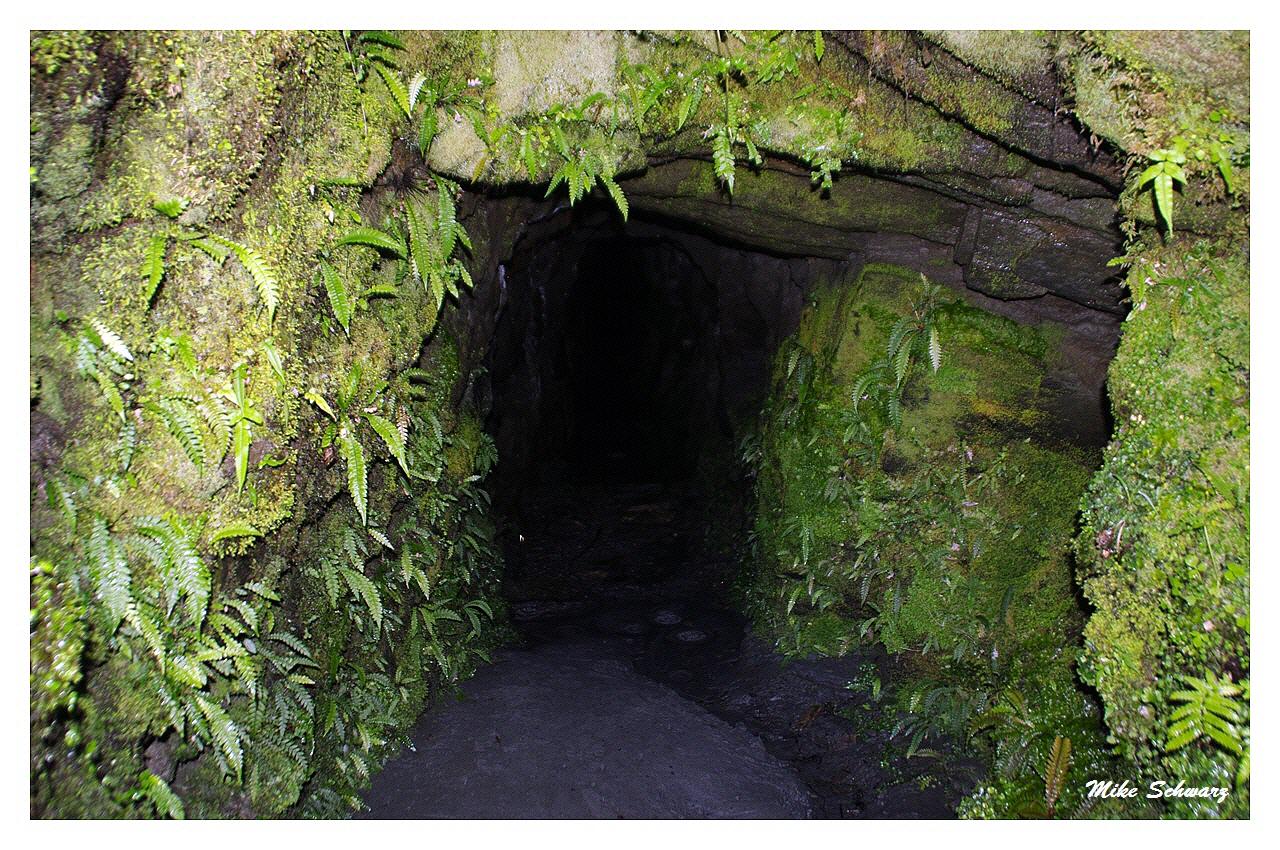 Tatare Tunnels Walk