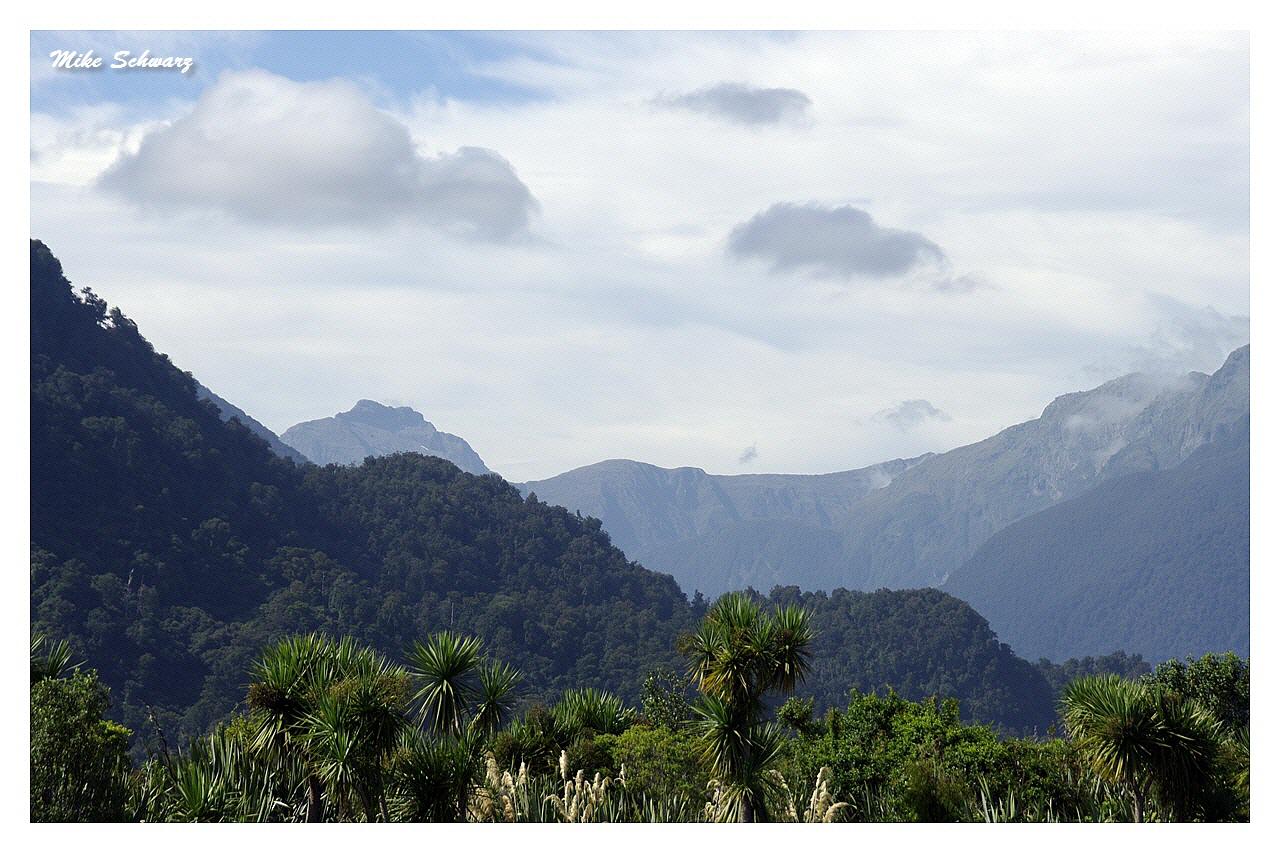 NZ Nature