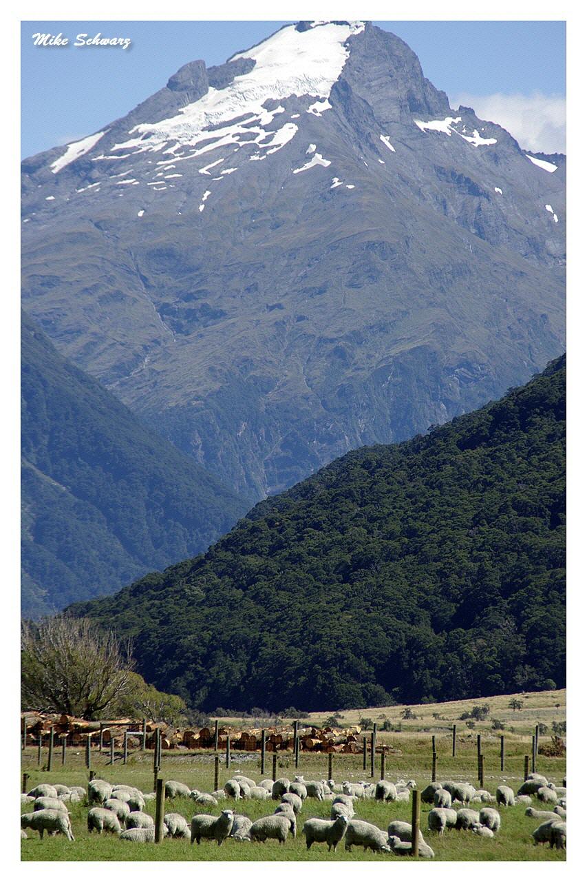 Mount Cameron