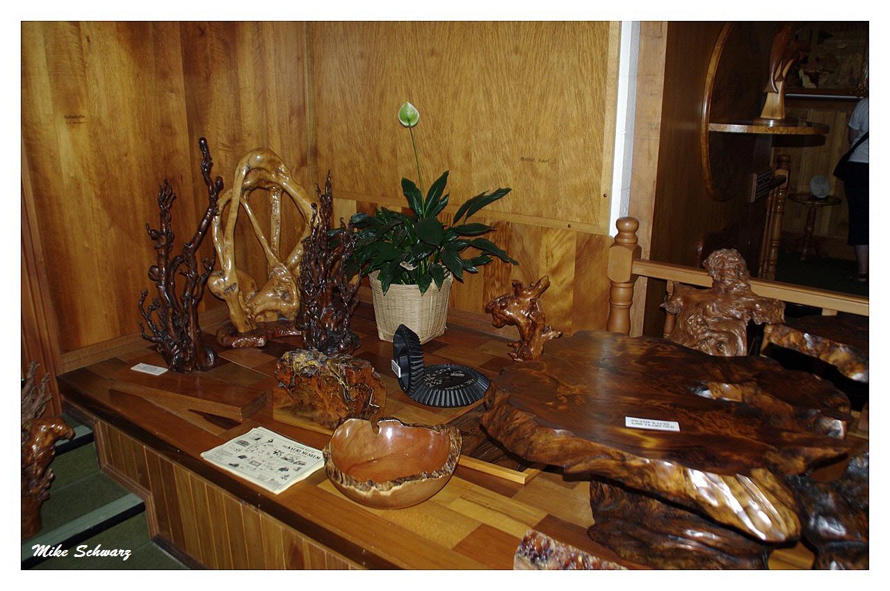 Pionier- und Kauri-Museum