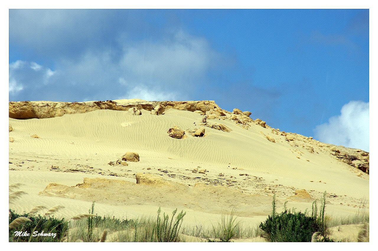 Neuseeländische Wüste