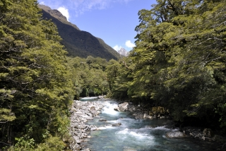 Milford Sound Route