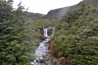 Wasserfall im Tongario NP